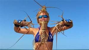 Florida Lobster: HOW TO Catch, Clean & Cook! | FunnyDog.TV