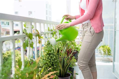fiori da mettere sul balcone fiori sul balcone e non scopri consigli e suggerimenti