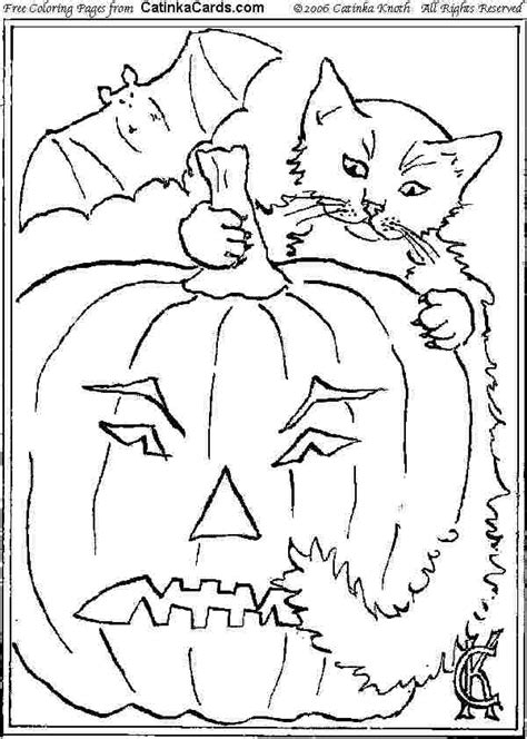 halloween scary cat coloring pages   print