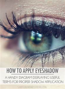 How To Apply Eyeshadow  Best Diagram Of Eyeshadow