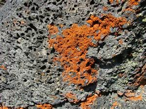 What Color Is Volcanic Rocks