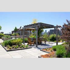 Outdoor Spaces In The Inner City Rooftop Gardens