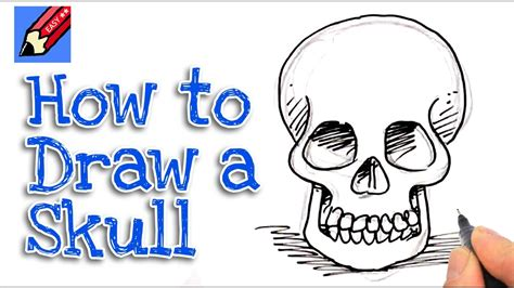 draw  skull   front real easy youtube