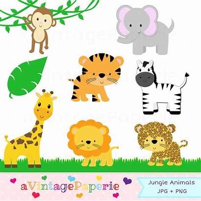Jungle Zoo Clipart Clip Animal Safari Printable