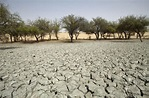 Sahel, desertification causes drought and makes it ...