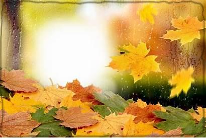Autumn Toamna Picaturi Frame Frames Leaf Marcos