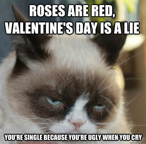 Fuck Valentines Day Meme - 60 angry cat funny memes for whatsapp