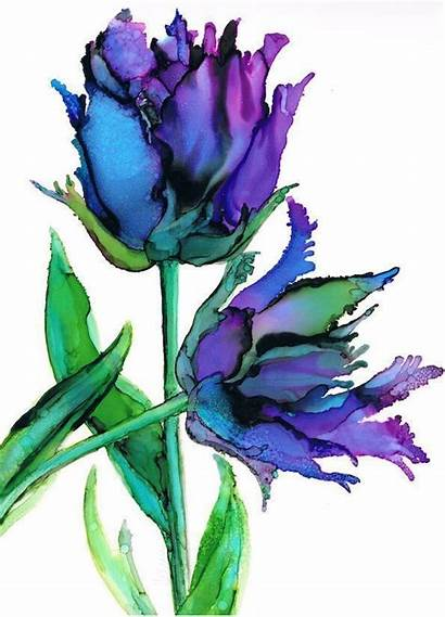 Ink Tulip Parrot Alcohol Painting Watercolor Tulips