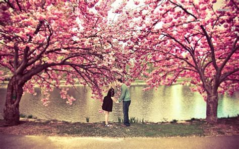 cherry blossom tree l better dating ideas nyc april 30th may 3rd eligible