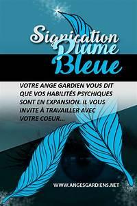 Signification Plume Noire : signification plume grise ~ Carolinahurricanesstore.com Idées de Décoration