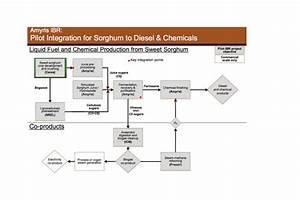 Sweet Sorghum Made Into Bio Diesel | Energy