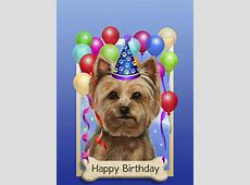 Happy Birthday Yorkie ☆♡ bday fun! Pinterest Happy
