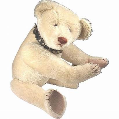 Teddy Bear Treasure Chest