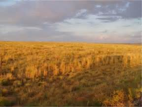 Native American Great Plains Environment