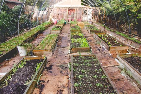 Farming In Your Backyard by Eco City Farms Farm Talk A View Of Reinal Roy Caspari