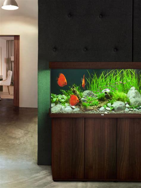 kosten aquarium einrichten dehner ihr shop f 252 r garten pflanzen balkon