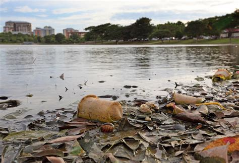 water pollution  kids information  facts