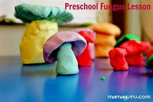 There U0026 39 S A Fungus Among Us  Preschool Mushroom Lesson