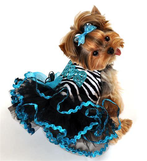designer custom  dog clothing tinkerbells closet