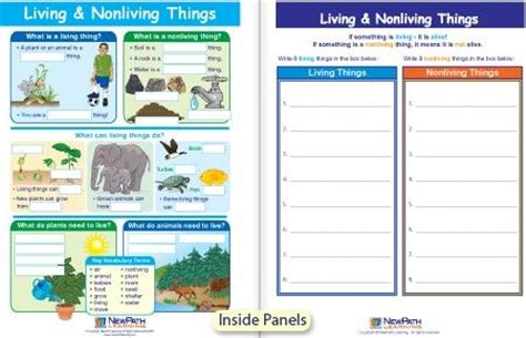 living nonliving things visual learning guide class