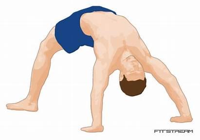 Bridge Exercises Bodyweight Pull Exercise Weights Bar
