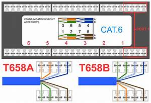 Cat5 Patch Cable Wiring Diagram  U2013 Volovets Info