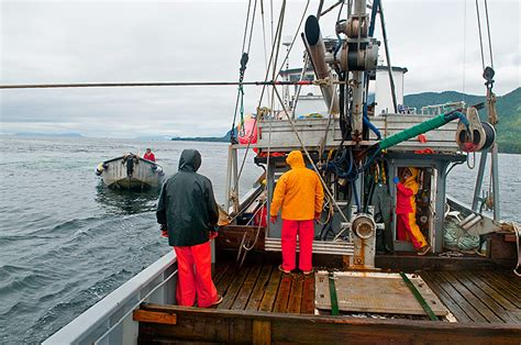 work   commercial fishing boat  alaska