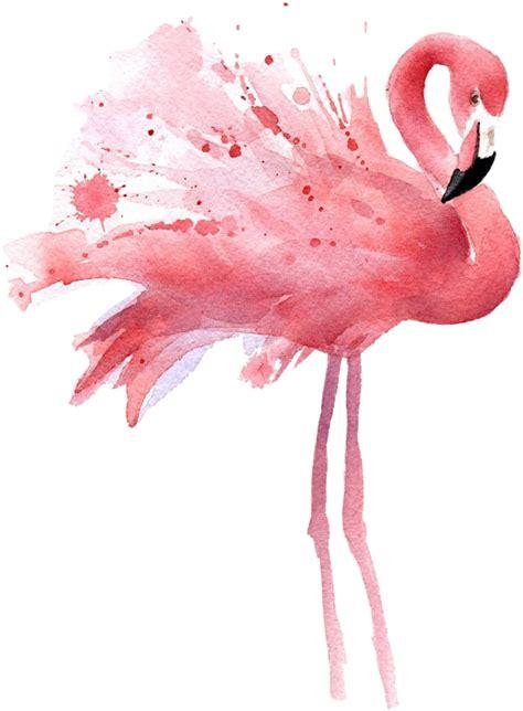 flamingo watercolor freetoedit sticker  qwerty