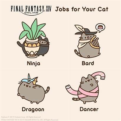 Pusheen Cat Fantasy Final Ffxiv Jobs Xiv