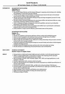 sharepoint developer resume samples velvet jobs With sharepoint sample resume developers