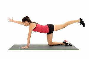What Are the Bird Dog Exercises for the Spine ...