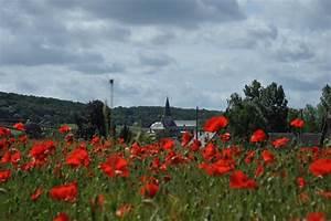 bons plans vacances en normandie chambres d39hotes et gites With des plans pour maison 12 ancienne abbaye saint martin maison de ville tournai photo