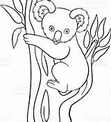 Koala Coloring Pages Baby Cute Bear Cartoon Simple Printable Drawing Little Animal Goomba Vector Doodle Mario Tree Smiles Animals Outline sketch template
