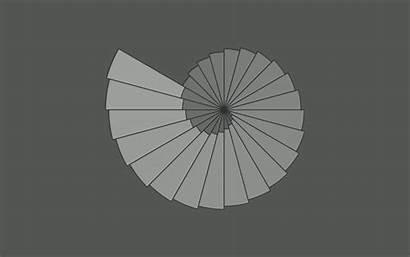 Nautilus Fibonacci Wallpapers Minimalistic Grey Monodomo Desktops