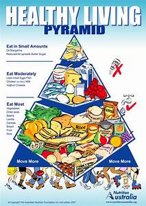 Muscle Activation  Food Pyramid