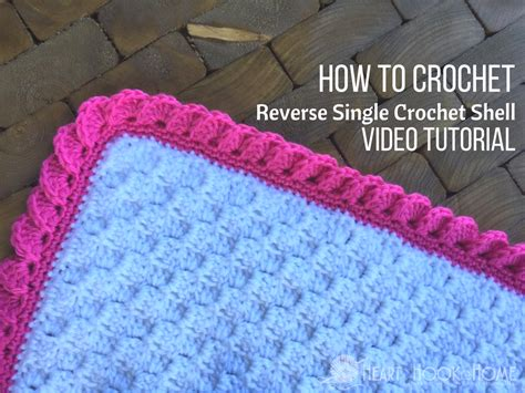 how to crochet reverse shell crochet border using single crochet video tutorial