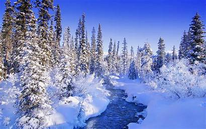 Winter Forest River Wallpapers Background Snow Scenes