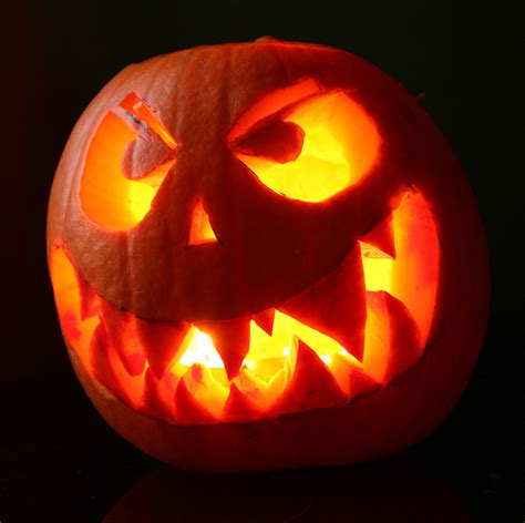 carved pumpkins your halloween jack o information the flag press