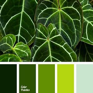Wandfarbe Grün Palette : color palette 2583 color palette pinterest farben farbpalette und farbenlehre ~ Watch28wear.com Haus und Dekorationen