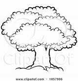 Canopy Tree Mature Illustration Clip Lush Vector Outlined Royalty Clipart Lal Perera Regarding Notes sketch template