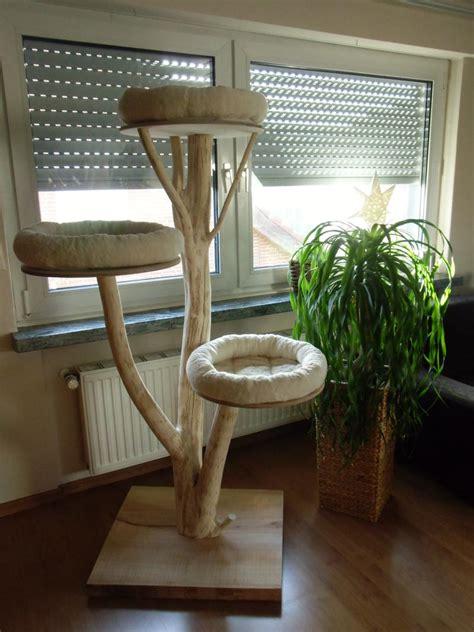 kratzbaum echter baum kratzbaum selber bauen baumstamm