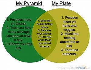 My Pyramid And My Plate   Venn Diagram