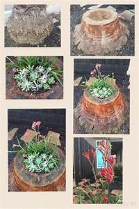 17 Best Images About Palm Tree Stumps Repurposed On Pinterest