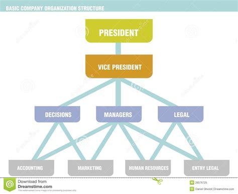 Basic Company Organization Structure Chart Stock Vector