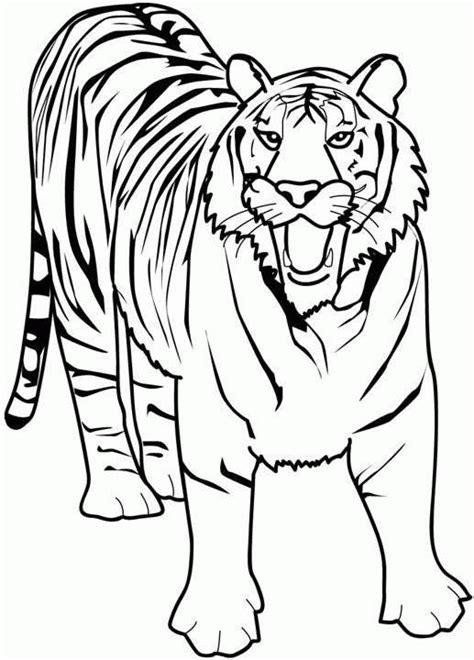 tiger malvorlagen malvorlagende