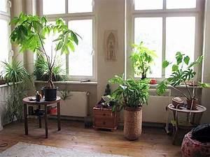 Blumen Deko Wohnzimmer. 20 deko ideen mit blumen und zimmerpflanzen ...