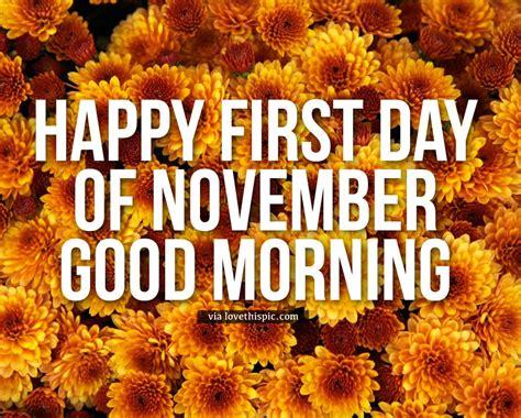Chrysanthemum Happy First Day Of November Good Morning ...
