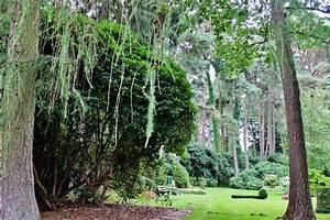 Zeig Deinen Po : ohlsdorfer friedhof die ultimative anleitung zum central park der herzen mit vergn gen hamburg ~ Orissabook.com Haus und Dekorationen