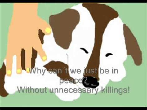 animal cruelty animation youtube