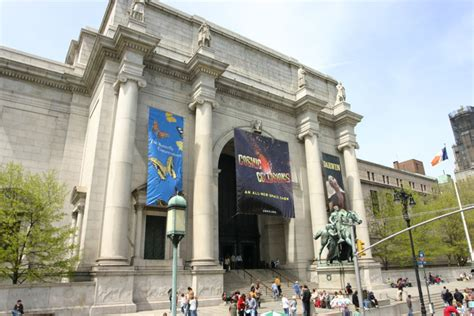 American Museum Of Natural History  Picture Gallery
